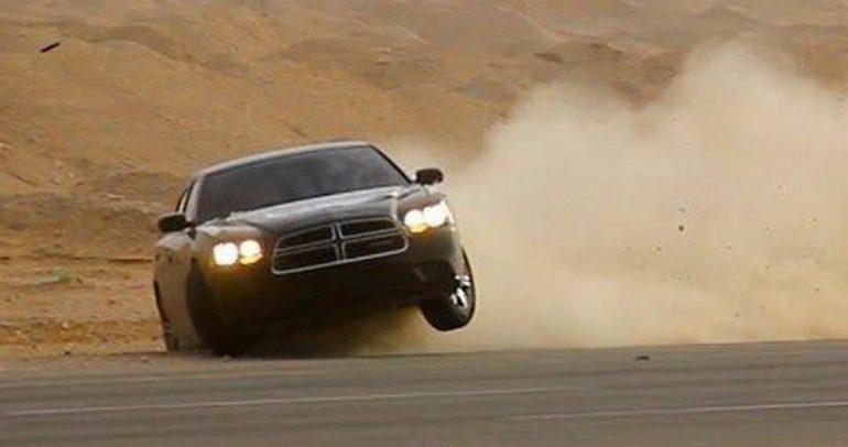 بالفيديو: شاهدوا ماذا حصل عندما تفاجأ بجمل يقطع الطريق أثناء التفحيط بسيارته