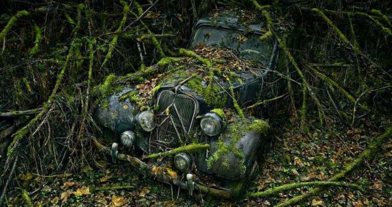 خلال 40 عاما.. حكايات وقصص لا تصدق في عالم السيارات!