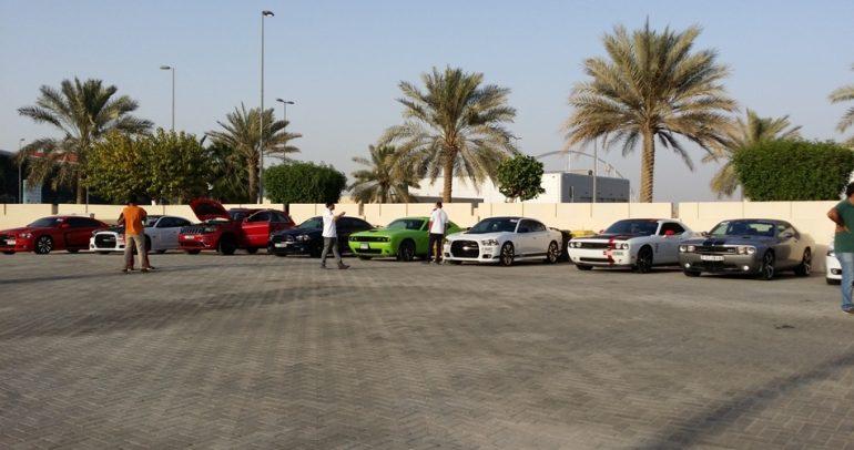 بالفيديو مهرجان أس آر تي في الإمارات